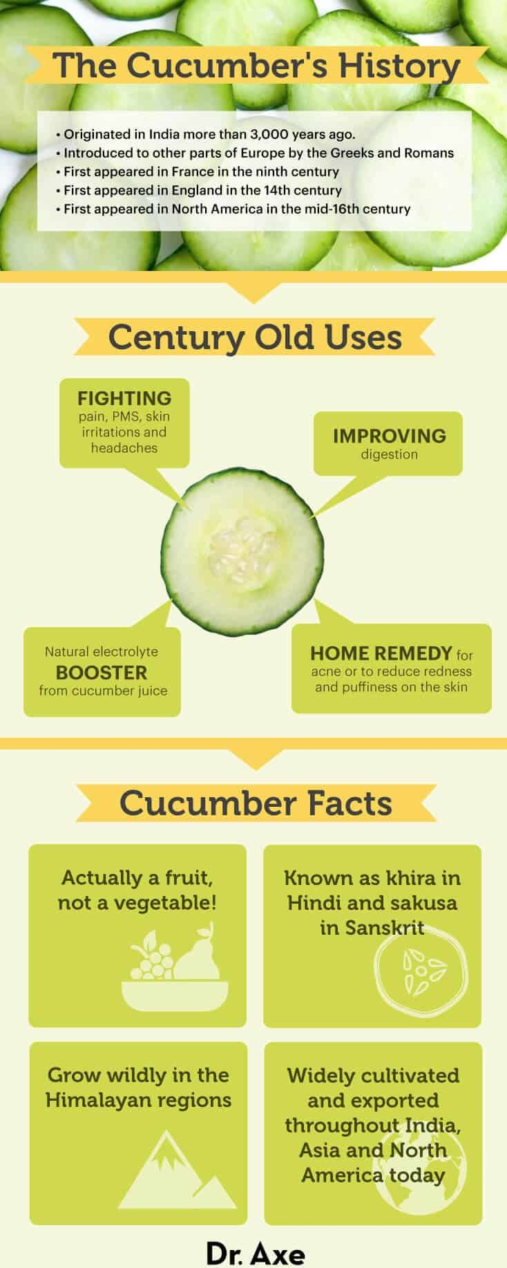 Cucumber Nutrition, Health Benefits, Recipes and More