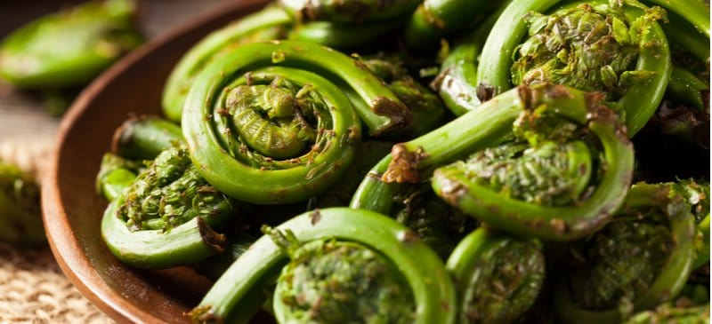 What Are Fiddleheads? How to Use These Edible Fern Shoots