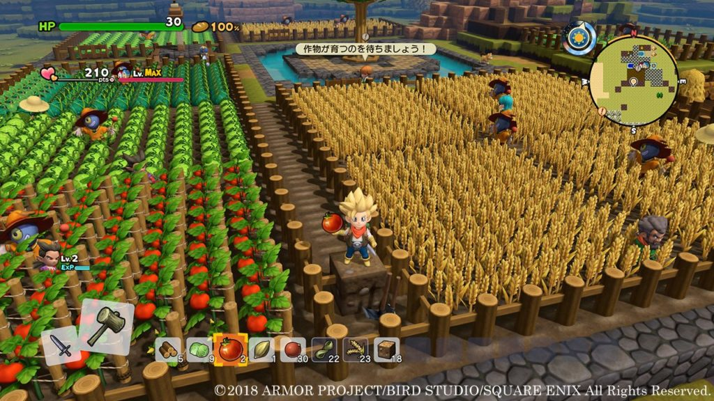 Dragon Quest 2 Agricultural fields