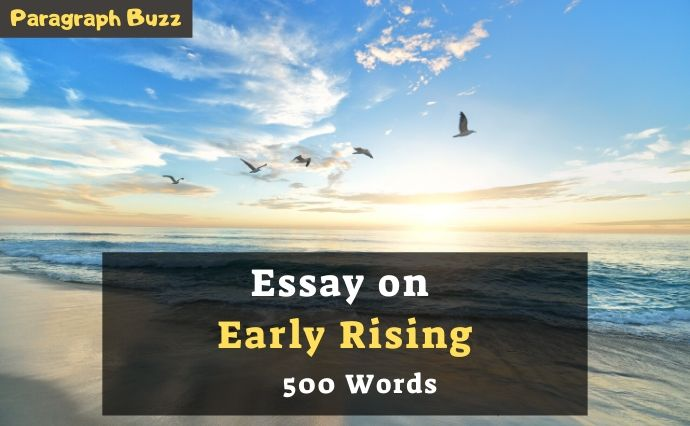 Early take-off Test in 500 words
