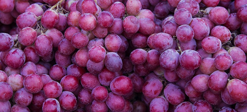 Grapes: Health Benefits, Nutrition, Recipes and Risks