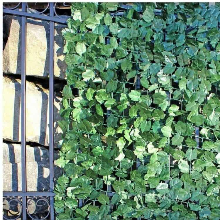 Green decorative privacy screen (par. visualhunt.com)