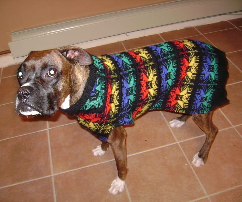 Hideous sweater