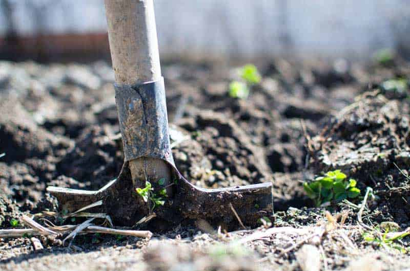 http://server.digimetriq.com/wp-content/uploads/2020/12/1608019393_731_How-to-Fix-a-Muddy-Yard-Here-Are-Several.jpg