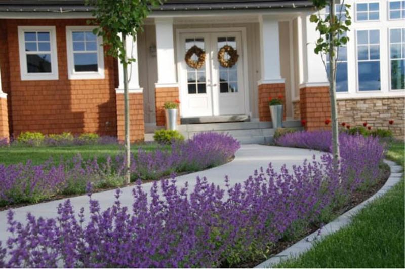 Lavender Street