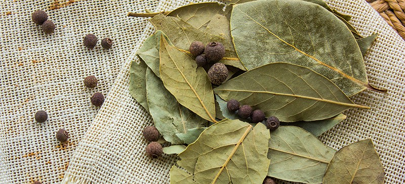 Bay Leaf Benefits, Nutrition, Side Effects and How to Use
