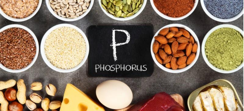 Top Foods High in Phosphorus, Benefits, Recipes, Supplements