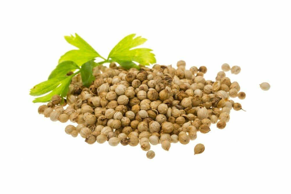 11 The surprising health benefits of coriander seeds