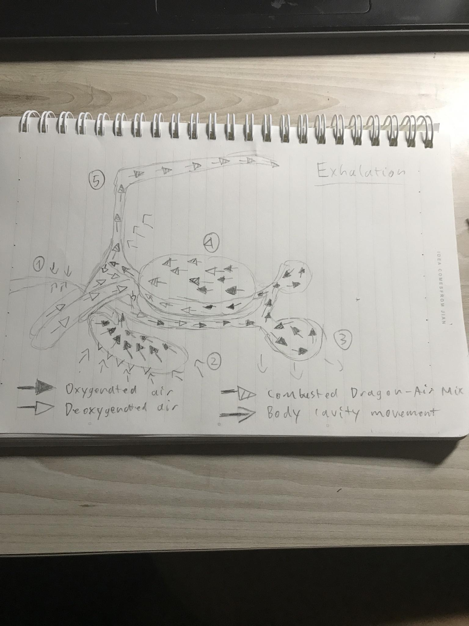 6VkYZjN - The Biology of Valfalk (/Valphalk/Valstrax) with drawings and diagrams!