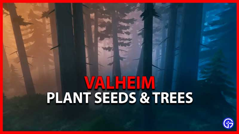 How To Plant Valheim Seeds And Trees