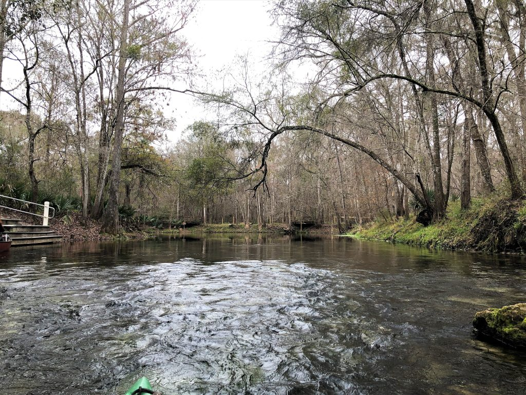 http://server.digimetriq.com/wp-content/uploads/2021/02/1612419143_938_Kayaking-the-Splendid-Santa-Fe-River-in-High-Springs-FL.jpg