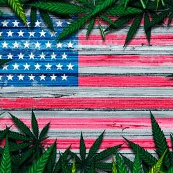 Top Marijuana Penny Stocks on 4/20? Investing in Pot Stocks Made Simple