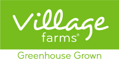 Village Farms Cannabis Revenue Increases 34% to $17.5 Million