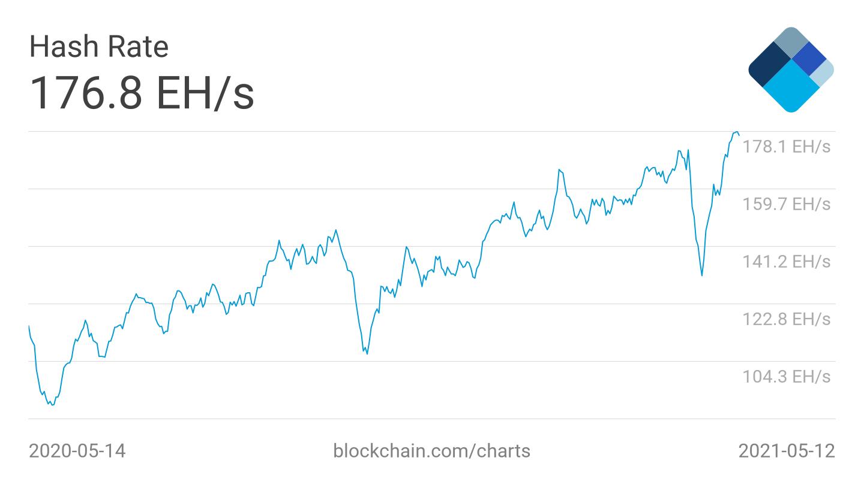 bitcoin profitto ora muschio elon coinpayments paypal